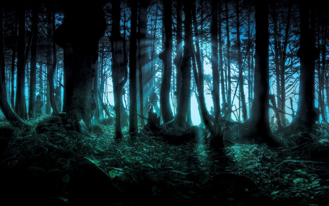 Tales of Sylvania | Billets Non-Joueurs